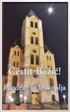 Cestit Bozic
